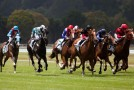 23 év után ismét lovas derby Somorján