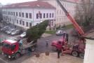 Karácsonyfa-állítás a város Fő terén