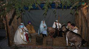 Élő Betlehem Tejfalun