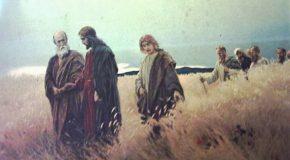Napi evangélium – január 17. – Kedd