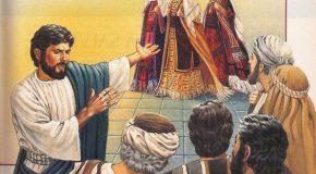 Napi evangélium – 2017. november 5. – Évközi 31. vasárnap